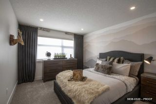 Photo 34: 2 Easton Close: St. Albert House for sale : MLS®# E4224452