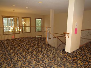 Photo 33: 329 10121 80 Avenue in Edmonton: Zone 17 Condo for sale : MLS®# E4255025