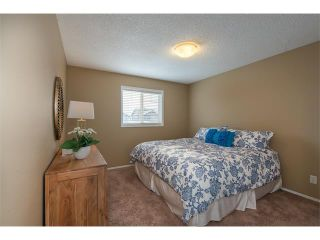 Photo 20: 289 West Lakeview Drive: Chestermere House for sale : MLS®# C4092730