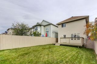 Photo 23: 1159 Country Hills Circle NW in Calgary: Country Hills Detached for sale : MLS®# A1150654