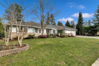 Photo 2: 3182 142 Street in Surrey: Elgin Chantrell House for sale (South Surrey White Rock)  : MLS®# R2544742