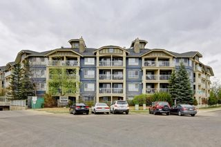 Photo 41: 338 35 Richard Court SW in Calgary: Lincoln Park Apartment for sale : MLS®# A1124714