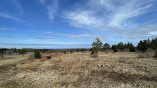 Photo 3: 2115 Arlington Road in Mount Rose: 400-Annapolis County Vacant Land for sale (Annapolis Valley)  : MLS®# 202106691
