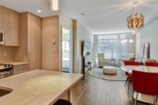 Photo 7: 301 1090 Johnson St in : Vi Downtown Condo for sale (Victoria)  : MLS®# 866462