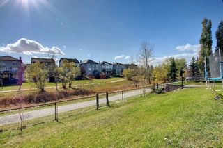 Photo 48: 176 WILLOWMERE Way: Chestermere Detached for sale : MLS®# A1153271