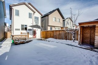 Photo 25: 90 Auburn Bay Manor SE in Calgary: Auburn Bay Detached for sale : MLS®# A1049204