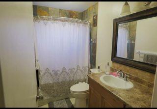 Photo 13: 5411 54 Street NE in Calgary: Falconridge Detached for sale : MLS®# A1071559