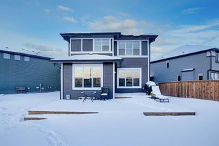 Photo 39: 278 Kingfisher Crescent SE: Airdrie Detached for sale : MLS®# A1068336