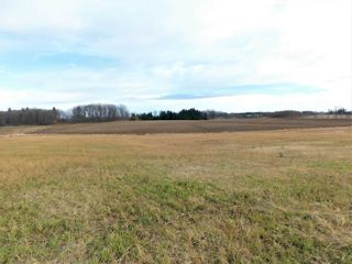 Photo 19: 15886 Centreville Creek Road in Caledon: Rural Caledon House (2-Storey) for sale : MLS®# W5310399