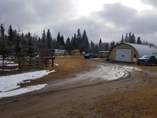 Photo 16: 57518 RGE RD 233: Rural Sturgeon County House for sale : MLS®# E4235337