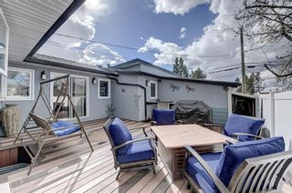 Photo 36: 3203 12 Avenue SE in Calgary: Albert Park/Radisson Heights Detached for sale : MLS®# A1139015