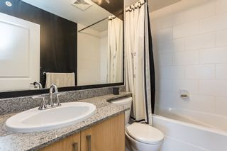 """Photo 19: 417 2943 NELSON Place in Abbotsford: Central Abbotsford Condo for sale in """"Edgebrook"""" : MLS®# R2594273"""