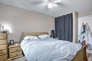 Photo 16: 367 Maitland Crescent NE in Calgary: Marlborough Park Detached for sale : MLS®# A1093291