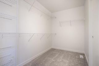 Photo 31: 173 Springwater Road in Winnipeg: Bridgwater Lakes Residential for sale (1R)  : MLS®# 202018909