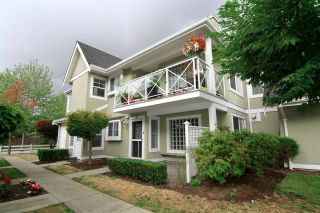 """Photo 20: 36 23560 119 Avenue in Maple Ridge: Cottonwood MR Townhouse for sale in """"HOLLYHOCK"""" : MLS®# R2613687"""
