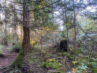 Photo 2: Lt 31 Wildwood Cres in : Isl Gabriola Island Land for sale (Islands)  : MLS®# 863197