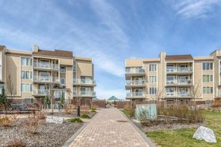Photo 3: 203 3737 42 Street NW in Calgary: Varsity Apartment for sale : MLS®# A1105296
