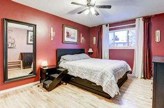 Photo 22: 183 Brabourne Road SW in Calgary: Braeside Detached for sale : MLS®# A1064696