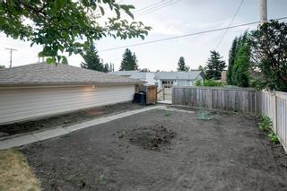 Photo 31: 6951 Silver Springs Road NW in Calgary: Silver Springs Detached for sale : MLS®# A1126444