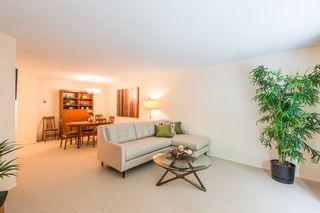 """Photo 3: 3313 FLAGSTAFF Place in Vancouver: Champlain Heights Townhouse for sale in """"COMPASS POINT"""" (Vancouver East)  : MLS®# R2074045"""