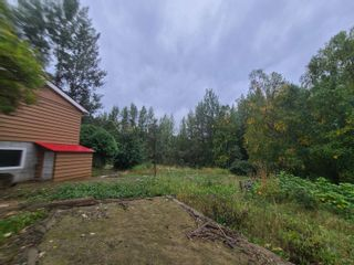 Photo 4: 4453 MOUNTAIN VIEW Road in McBride: McBride - Town Land for sale (Robson Valley (Zone 81))  : MLS®# R2616224