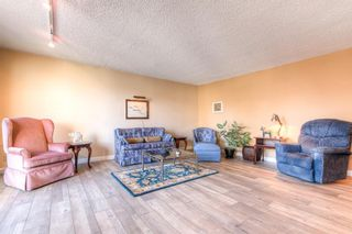 Photo 8: 301 1229 Cameron Avenue SW in Calgary: Lower Mount Royal Apartment for sale : MLS®# A1095141