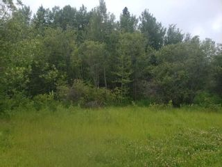 Photo 2: 831 Pelican Road: Rural Opportunity M.D. Rural Land/Vacant Lot for sale : MLS®# E4252453