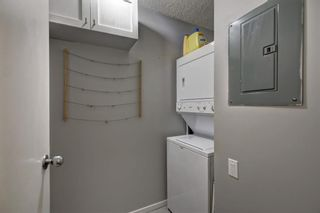 Photo 23: 2011 2011 Edenwold Heights NW in Calgary: Edgemont Apartment for sale : MLS®# A1091382