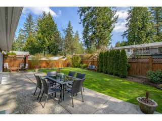 Photo 29: 4662 197 Street in Langley: Langley City House for sale : MLS®# R2561402