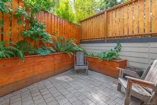 Photo 27: 2826 Cedar Hill Rd in Victoria: Vi Oaklands House for sale : MLS®# 841745