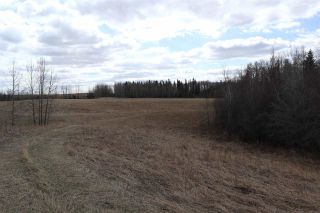 Photo 21: Twp 510 RR 33: Rural Leduc County Rural Land/Vacant Lot for sale : MLS®# E4239253