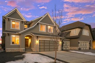 Photo 48: 36 Marquis View SE in Calgary: Mahogany Detached for sale : MLS®# A1077436