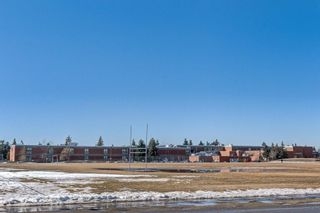 Photo 22: 206 4908 17 Avenue SE in Calgary: Forest Lawn Apartment for sale : MLS®# C4305197