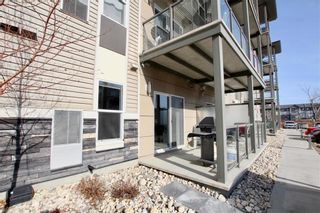 Photo 10: 1111 65 Fiorentino Street in Winnipeg: Starlite Village Condominium for sale (3K)  : MLS®# 202104825