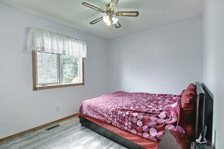 Photo 39: 128 Eldorado Close NE in Calgary: Monterey Park Detached for sale : MLS®# A1116586