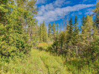 Photo 9: 20 34364 RANGE ROAD 42: Rural Mountain View County Land for sale : MLS®# A1017805