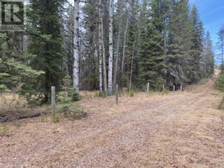 Photo 48: 53118 Range Road 224A in Rural Yellowhead County: House for sale : MLS®# A1100110