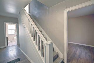 Photo 5: 10061 94 Street NW in Edmonton: Zone 13 House for sale : MLS®# E4266327