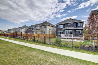 Photo 42: 2040 88 Street in Edmonton: Zone 53 House for sale : MLS®# E4262564