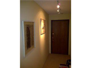 Photo 4: 213 330 E 7TH Avenue in Vancouver: Mount Pleasant VE Condo for sale (Vancouver East)  : MLS®# V861875
