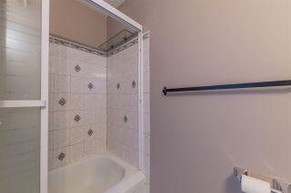 Photo 24: 15 Ridgewood Terrace: St. Albert Townhouse for sale : MLS®# E4241965