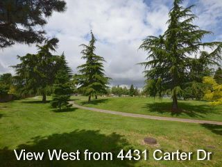 Photo 20: 4431 CARTER DRIVE: West Cambie Home for sale ()  : MLS®# R2181603