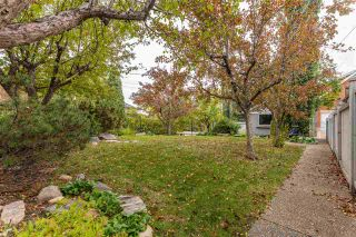 Photo 41: 86 ST GEORGE'S Crescent in Edmonton: Zone 11 House for sale : MLS®# E4220841