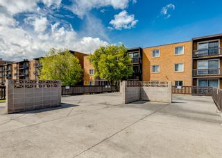 Photo 28: 404 507 57 Avenue SW in Calgary: Windsor Park Apartment for sale : MLS®# A1112895