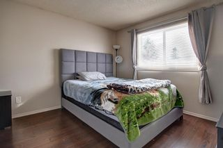 Photo 14: 180 Maitland Place NE in Calgary: Marlborough Park Detached for sale : MLS®# A1048392