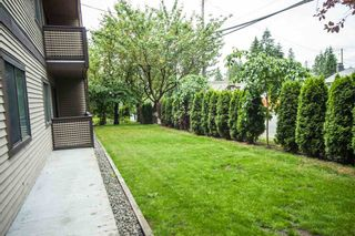 "Photo 16: 104 535 BLUE MOUNTAIN Street in Coquitlam: Central Coquitlam Condo for sale in ""REGAL COURT"" : MLS®# R2081346"