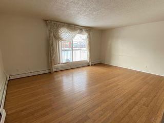 Photo 14: 206 10023 164 Street in Edmonton: Zone 22 Condo for sale : MLS®# E4247123