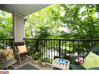 """Photo 10: 215 5765 GLOVER Road in Langley: Langley City Condo for sale in """"COLLEGE COURT"""" : MLS®# F1013966"""