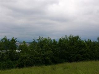 Photo 8: 29744 Downes Rd: House for sale (Abbotsford West)