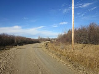 Photo 12: NW 24-54 RR 131: Niton Junction Rural Land for sale (Edson)  : MLS®# 32590